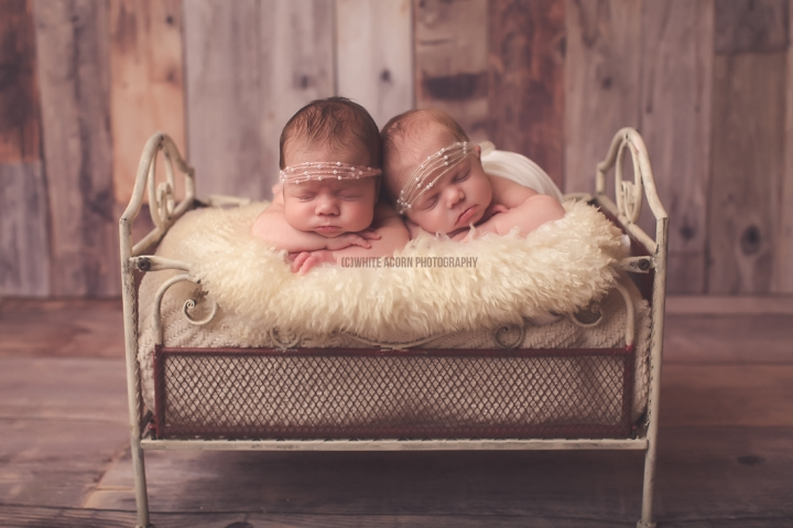 Newborn Twin Photo Session