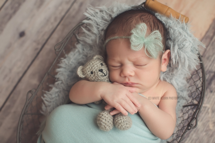 newborn photography white acorn photography