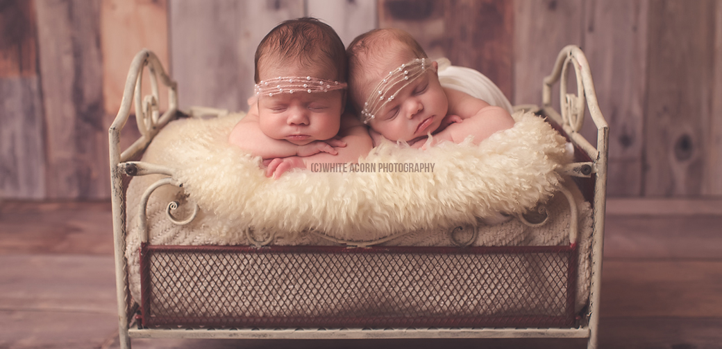 Welcome to white acorn photography specializing in newborn baby photography white acorn photography website